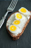 Bruschetta do pão de Rye Imagem de Stock