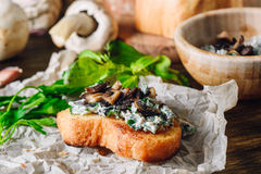 Bruschetta with Fried Agaricus and Sour Cream. On Paper Royalty Free Stock Photo