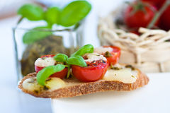 Bruschetta with mozzarella Stock Image