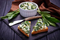 Bruschetta with ramson salad on slate background Stock Photography