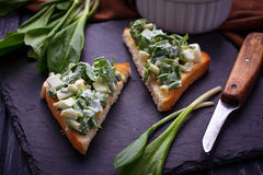 Bruschetta with ramson salad on slate background Royalty Free Stock Image