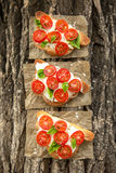 Bruschetta. With Tomato and Basil Royalty Free Stock Image