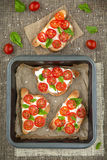 Bruschetta. With Tomato and Basil Royalty Free Stock Photography