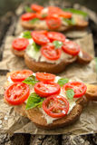 Bruschetta. With Tomato and Basil Stock Photography