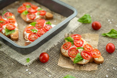 Bruschetta. With Tomato and Basil Royalty Free Stock Photo