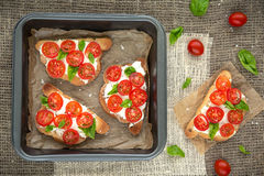 Bruschetta. With Tomato and Basil Royalty Free Stock Photos