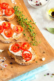 Bruschetta with tomatoes and cheese Stock Photography