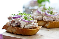 Bruschetta with tuna Stock Photography