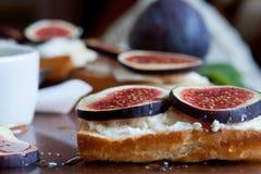 Bruschetta z koźlim serem i figami Zdjęcia Royalty Free