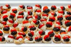 Bruschette avec la diffusion d'olive, le fromage fondu et les tomates image stock