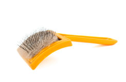 Brush for animals Stock Photography