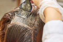 Brush applying dye on hair. Hair of women close up Stock Photography
