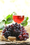 Brush of black  grapes with leaves Royalty Free Stock Photo