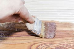 Brush in the brown paint, paint a tree. Royalty Free Stock Image