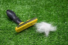 Brush for cat or dog with fur. On green grass background.  Grooming concept Stock Image