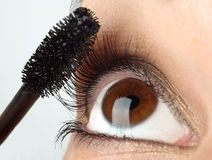 Brush for eyelash royalty free stock images