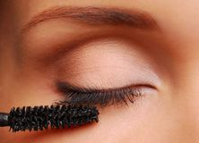 Brush for eyelashes stock images