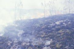 Brush fire, Illinois Stock Photos