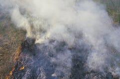 Brush fire, Illinois Stock Photography