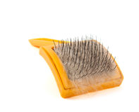 Brush For Animals Stock Photo