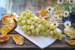 A brush of grapes in a wooden cup, old wooden table white cutting board stock image