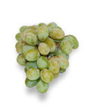 Brush of green grapes isolated Stock Images
