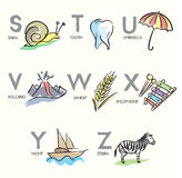 Brush_Illustrated_Alphabet_Letters_S-Z Stockbilder