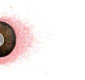Brush kabuki close-up with pink blush or highlighter isolated on white. Background Stock Photography
