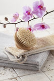 Brush, loofah and towel for hydration and purity Royalty Free Stock Photography