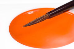 Brush and orange watercolor paint Royalty Free Stock Image
