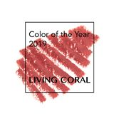 Brush and paint texture on paper living coral. Colour of the year 2019 stock photos