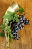 Brush ripe sweet grapes with a traditional drinking horn Stock Images