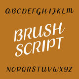 Brush script distressed alphabet vector font Stock Photo