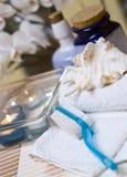 brush spa πετσέτα Στοκ φωτογραφία με δικαίωμα ελεύθερης χρήσης