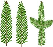 Brush of spruce, fir, Christmas tree vector illustration. Brush of spruce, fir, Christmas tree, green and brown, vector illustration Stock Images