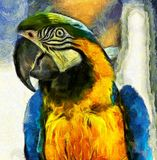 Brush Stroke Parrot. Photo Manipulation - Digital Art - vivid blue and yellow parrot converted to a painting royalty free illustration