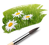 Brush and summer paint Royalty Free Stock Images