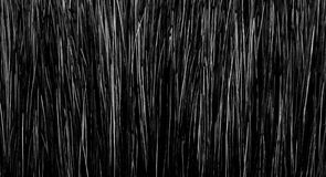 Brush texture. Black and white brush texture at high magnification Stock Photography