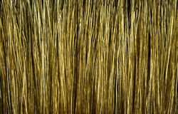 Brush texture. Hair of brush texture at high magnification Stock Photo