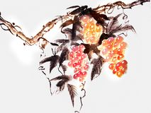 Chinese ink painting of a grape royalty free illustration