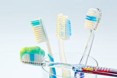 Brush your teeth toothbrushes Stock Image