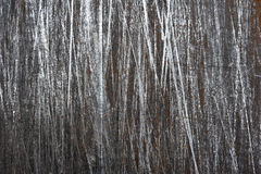 Brushed steel sheet with scratches background Royalty Free Stock Photo