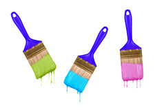 Brushes of dripping colored paint Royalty Free Stock Images