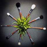 Brushes In Circle Stock Image