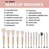 Brushes for makeup - vector illustration stock illustration