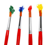 Brushes in paint Stock Image