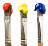 Brushes with paint. Three different brushes with paint Royalty Free Stock Photography