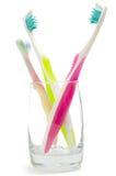 brushes tanden Royaltyfri Foto