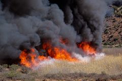 Brushfire Stock Photo