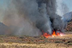 Brushfire. Fierce brushfire with flames and black smoke royalty free stock photos